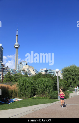 Toronto waterfront trail with CN Tower - Stock Photo