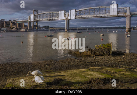 Prince Albert Bridge over the river Tamar with rotting boat and swans on river bank in Plymouth, Devon, England. - Stock Photo