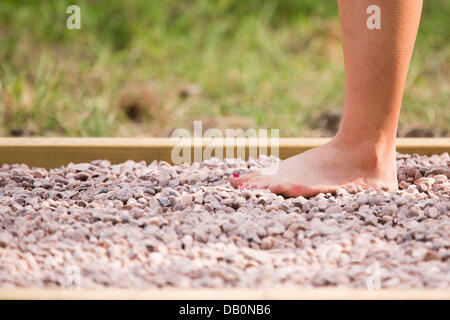 Bristol, UK. 22nd July, 2013. A woman walks through the Barefoot Trail at the launch of the Wild Place Project, - Stock Photo