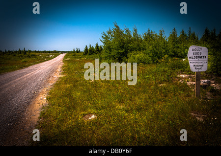 Dirt road through the high plateau of Dolly Sods Wilderness, Monongahela National Forest, West Virginia - Stock Photo