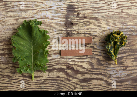kale equals kale chip on weathered wood - Stock Photo
