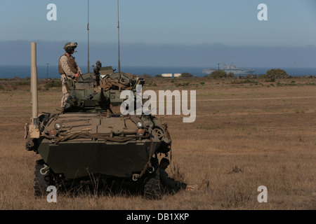 A Marine with Light Armored Reconnaissance Company, Battalion Landing Team 1/4, 13th Marine Expeditionary Unit, - Stock Photo