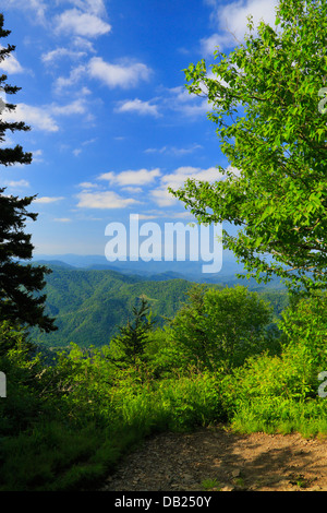 Looking East on Charlie's Bunion Trail, Great Smoky Mountains National Park, North Carolina, Tennessee, USA - Stock Photo