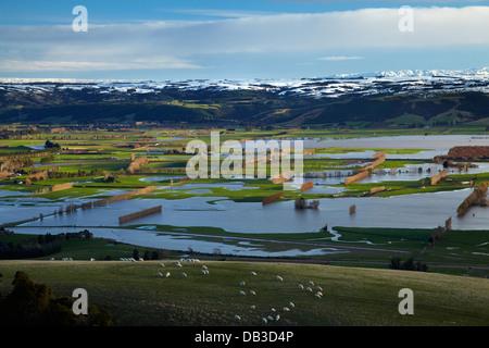 Flooded farmland on Taieri Plains, and snow on Maungatua, near Mosgiel, Dunedin, South Island, New Zealand - Stock Photo