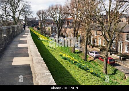 View along the old city walls looking north towards Micklegate Bar, York, UK. - Stock Photo