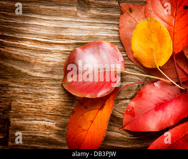 Autumn Leaves over wooden background. Fall - Stock Photo