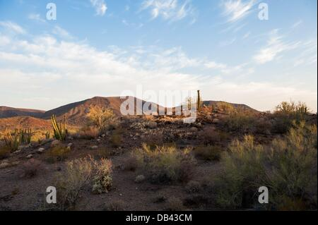 June 13, 2013 - Lukeville, Arizona, United States - Rough, harsh terrain is seen in a closed-to-the-public part - Stock Photo