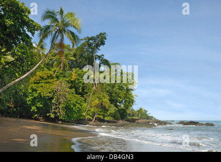 Tropical Beach in Corcovado National Park, Costa Rica - Stock Photo