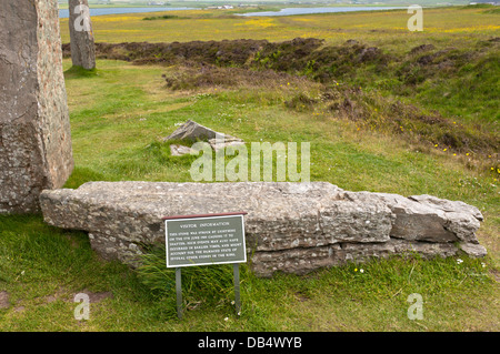One of the stones of the Ring of Brodgar that was struck by lightning in 1980. - Stock Photo