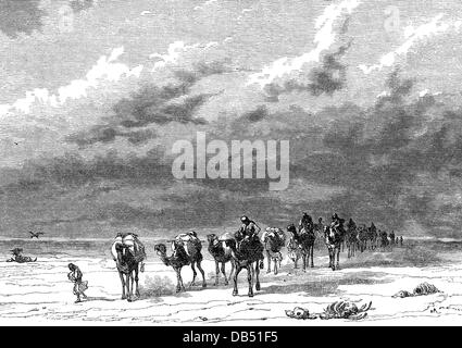 trade, transportation of goods, caravan in the desert, wood engraving, 19th century, 19th century, graphic, graphics, - Stock Photo
