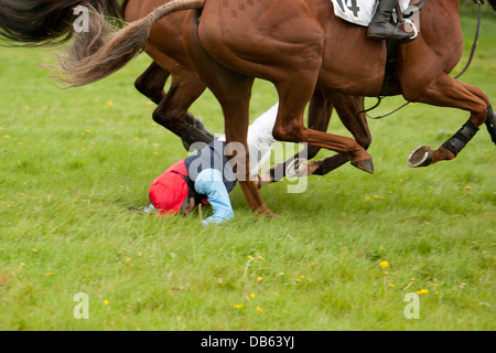 Jockey being dragged along by his horse - Stock Photo