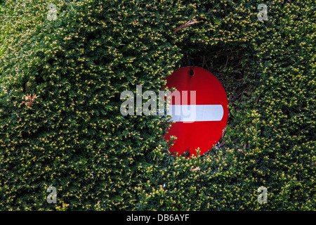 Barely visible traffic sign hidden in dense vegetation of hedge along road - Stock Photo