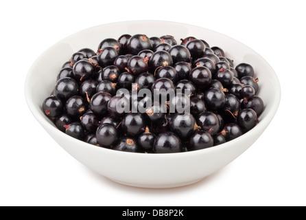 black currant bowl on white background - Stock Photo