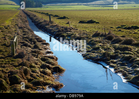Drainage channel and partly fenced riparian strip, Taieri Plains, near Dunedin, South Island, New Zealand - Stock Photo