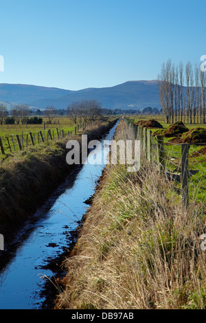 Drainage channel and fenced riparian strip, Taieri Plains, near Dunedin, South Island, New Zealand - Stock Photo