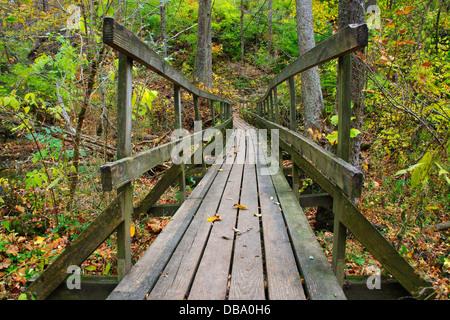 A Rickety Wooden Foot Bridge Over A Stream In Autumn, Glen Helen Nature Preserve; Yellow Springs Ohio, USA - Stock Photo