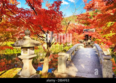 Fall foliage at Eikando Temple in Kyoto, Japan. 11/19 - Stock Photo