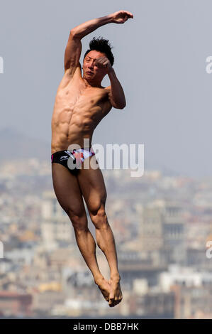 Barcelona, Spain. 27th July, 2013. in action during the Mens 10m Platform Diving Semifinal on Day 8 of the 2013 - Stock Photo