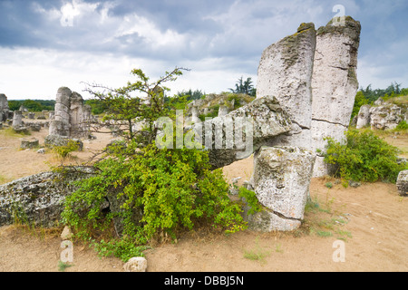 Phenomenon rock formations in Bulgaria around Beloslav - Pobiti kaman - Stock Photo