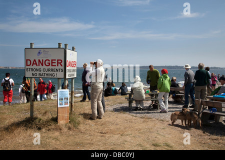 Dolphin watchers looking out to sea at Chanonry Point, Tourists watching the Moray Firth, Bottlenose dolphins, Cromarty, - Stock Photo