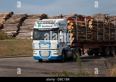 Harpers Scottish Tree Logging Trucks; Emissions from Bioenergy Norbord processing plant Inverness - Morayhill, Dalcross, - Stock Photo
