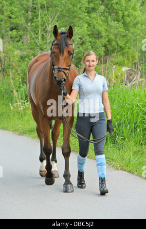 Woman leading a Bavarian horse on a small road - Stock Photo