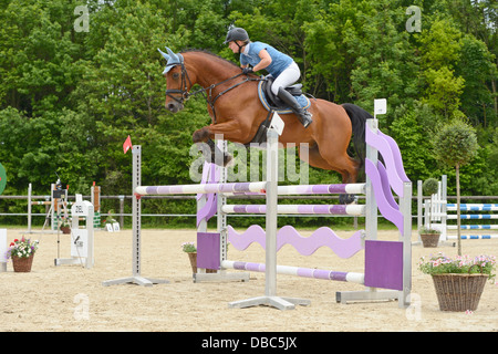Rider on back of a Bavarian horse jumping over an oxer - Stock Photo