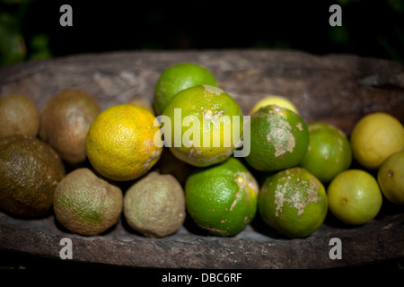 Limes and Lemons in a wooden bowl displayed in a organic fruit market in Aitutaki island, Cook islands - Stock Photo