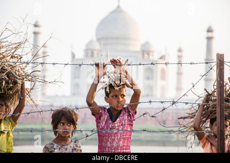 Local Indian children carrying firewood behind a barbed wire fence with the Taj Mahal in the background, Agra, India - Stock Photo