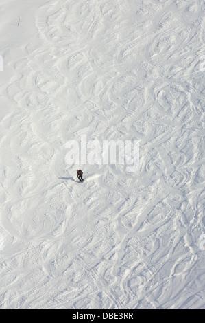 Skier amidst ski trails on the snow slopes of the 2978 metre Diavolezza, Graubünden, Switzerland - Stock Photo