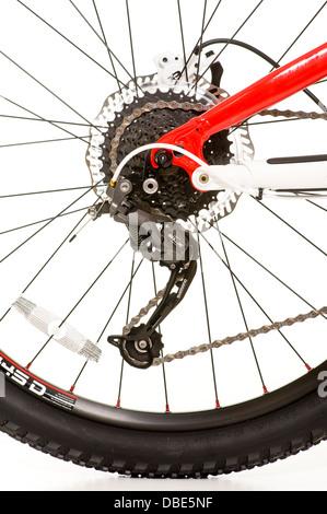 Rear wheel of mountain bike - Stock Photo