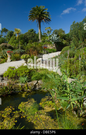 Small pond in the sub-tropical gardens at Tresco Abbey Garden, Tresco, Isles of Scilly, England - Stock Photo