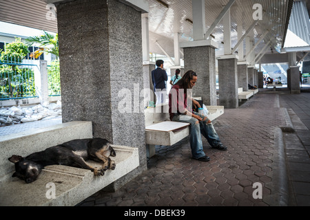 Thai man is sitting in the roadside in Bangkok - Stock Photo