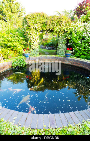 Typical English garden plants flowers and koi carp pond circular - Stock Photo