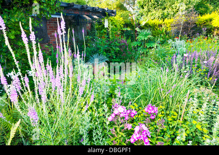 Typical english garden plants flowers and koi carp pond for Typical landscaping plants