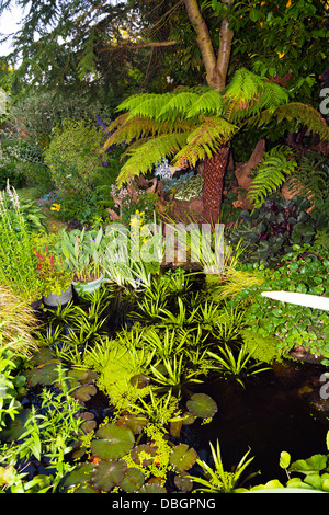 An ornamental garden pond in an english country garden for Typical landscaping plants
