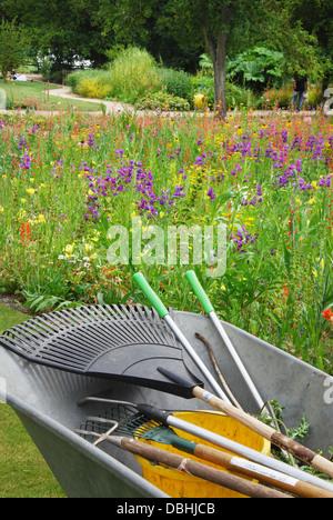 wheelbarrow with gardening tools in garden - Stock Photo