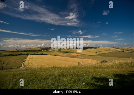 View of Chanctonbury Ring on the South Downs from Cissbury Rings near Worthing, West Sussex, UK - Stock Photo
