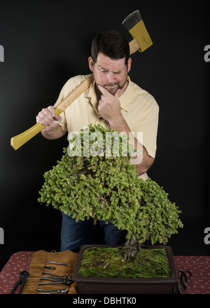 Man with axes consider how to prune Bonsai tree - Stock Photo