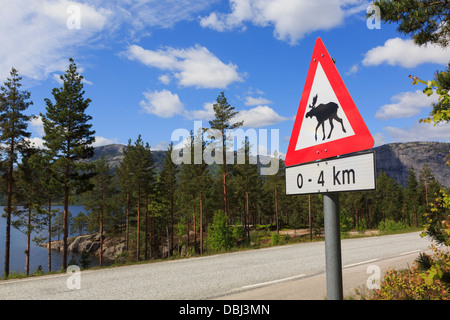 Red triangle warning sign for Moose or Elk on road 41 through forest around Nissedal, Telemark county, Norway, Scandinavia - Stock Photo