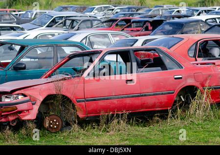 Old cars in junkyard - Stock Photo