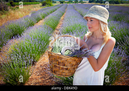 Young Woman In Lavender Field, Croatia, Dalmatia, Europe - Stock Photo