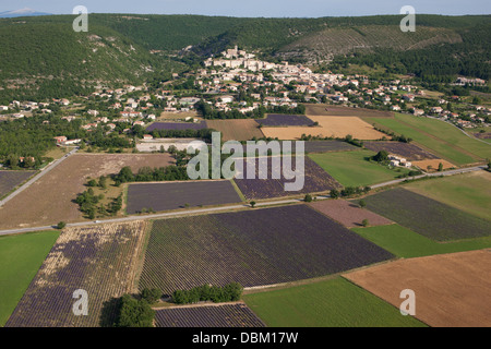 HILLTOP VILLAGE OF BANON (aerial view). Lavender fields in bloom. Alpes-de-Haute-Provence, Provence, France. - Stock Photo