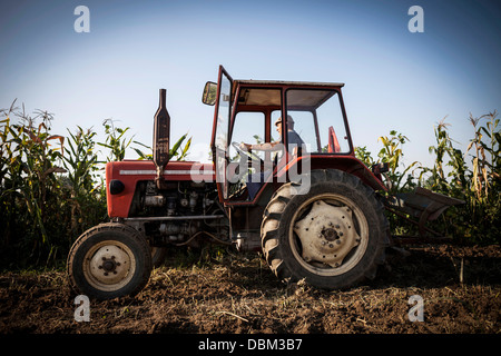 Farmer In Tractor Ploughing Field, Croatia, Slavonia, Europe - Stock Photo