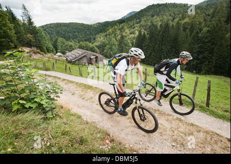 Two mountain bikers riding on a trail, pasture in background, Chiemgau, Bavaria, Germany - Stock Photo