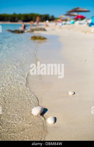 Sandy beach, Dugi Otok, Dalmatia, Croatia - Stock Photo