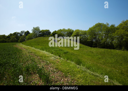 Uley Long Barrow (Hetty Pegler's Tump) near Uley, Gloucestershire, UK - Stock Photo