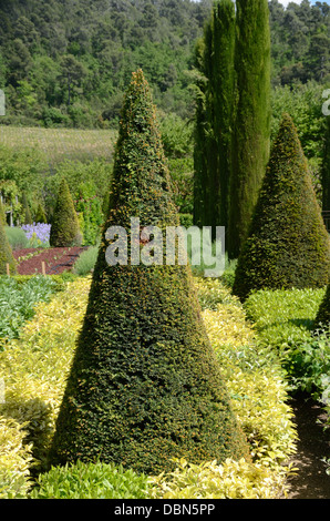 Topiary Gardens with Cone Shaped Yew Tree & Clipped Cypress Trees Château Val Joannis Pertuis Luberon Provence France - Stock Photo