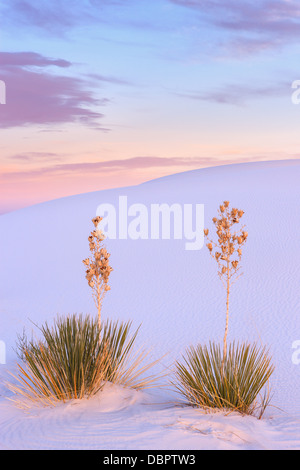 White Sands National Monument, near Alamagordo, New Mexico, part of the Chihuahuan desert. - Stock Photo