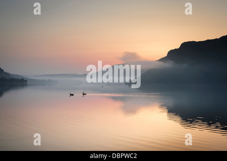 Two geese effortlessly glide across the surface of Ullswater in the English Lake District as the sun rises behind - Stock Photo